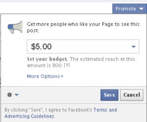 Facebook promoted post details