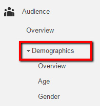 audience-demographics